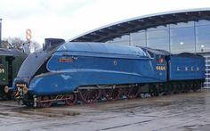 Class A4 T Shildon No 4464 (60019) Bittern 14.02.2014