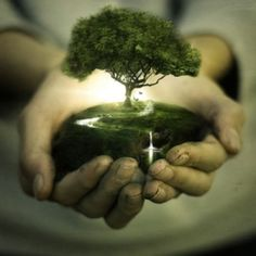 I think that I shall never see a poem lovely as a tree...........