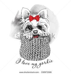 The poster with a portrait of the dog Yorkshire terrier with the bow and in the scarf. Vector illustration.
