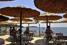 Summer in Camping Bijela Uvala - #Porec