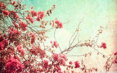Tavaszi háttérképek vintage stílusban második oldal