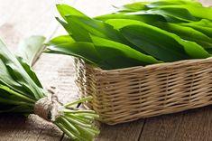 Greek Medicine, Medical Astrology, Oxalic Acid, Lactating Mother, Hot Soup, Allium, Lower Cholesterol, Natural Healing, Superfood