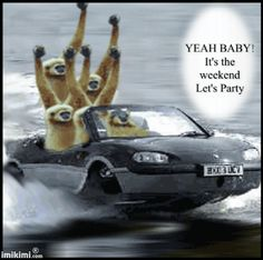 Yeah Baby! It's the weekend lets party animated friend weekend friday gif sunday saturday greeting weekend quotes happy weekend
