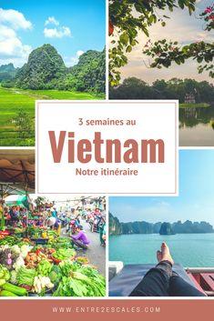Le Vietnam on en rêvait depuis longtemps. Au départ, ça devait être le voyage pour célébrer nos 30 ans. Mais les petites choses de la vie ont fait en sorte qu'on a dû patienter encore un an pour enfin avoir...