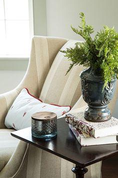 Plants in Interior Designs