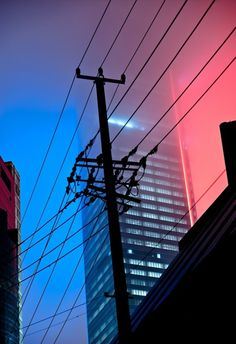 night, city, telephone wires, eerie, lights, pink and blue, atmosphere