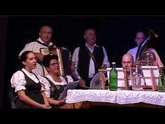 Familienmusiker - Sváb családi zenekarok találkozója Solymáron - 2. rész Musik