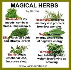 Green Witch: Magical Herbs. -Pinned by Minah Essentials, The Practikal Magick Shop. Visit us at: https://squareup.com/market/minah-essentials