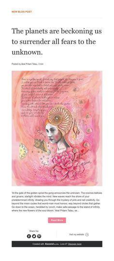 Art Of Love, News Blog, Cosmos, Teddy Bear, Animals, Animales, Animaux, Teddy Bears, Animal