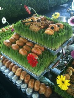 Brunch Buffet on Wheat Grass.By Karen Hollins Catering Director Morehouse College Presidential Homecoming 2012