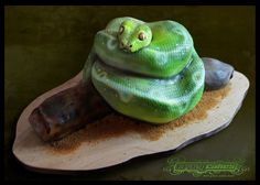 Snake cake Wow!.....she explains how she got the texture of the skin so realistic with a light cover from Home Depot!