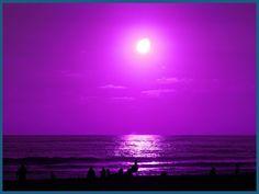 Purple Ocean Art Prints by Teri Johannes