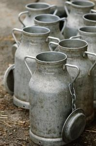 Apart from transporting milk from farm to market, old milk cans and churns have many utilitarian and decorative uses, both indoors and outdoors, around the home. Before you start. Country Charm, Country Life, Country Living, Milk Can Decor, Old Milk Cans, Old Milk Bottles, Milk Jugs, How To Remove Rust, Farms Living