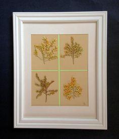 Origninal Botanical Art  Pressed Flowers on by MyStoningtonGarden, $43.00