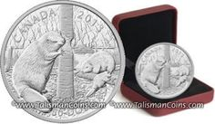 Canada 2013 Beaver #1 - Beaver Family $50 5 Ounce Pure Silver Proof GX WX