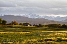 North Boulder County #Colorado farmlands looking west toward the Rocky #Mountains, this reminded me of a scene right out of the sound of music.  #Nature #FineArt #Photography #artwork #Gallery #interiordesign #commercialart - #Photo #Art from #Colorado to decorate your office, home, restaurant, boardroom, waiting room or any commercial space starting at $22 - #CorporateArt by #Photographer Copyright James Insogna www.BoInsogna.com