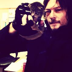 「Kitten on the walking dead set today」