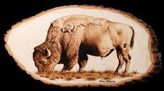 buffalo pyrography - Google Search