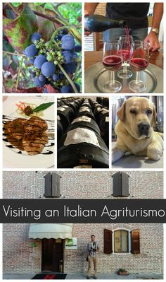 """An essential experience for any vacation in Italy: Visit an """"agriturismo,"""" a traditional farm that invites travelers to join them for a meal or a night in the farmhouse bed & breakfast: http://www.everintransit.com/italian-agriturismo/"""