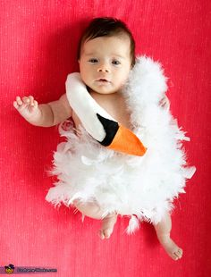 Bjork Mini-Swan Dress. Only pinning this to show my sister if she has a baby girl someday.