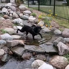 Greg Wittstock visited our company in June and this is one of 5 vlogs devoted to our company! We are water feature experts in Northern Michigan!
