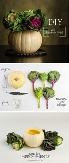 DIY Thanksgiving Centerpieces Have you ever thought of using a pumpkin as a vase? Make a quick and easy DIY Thanksgiving centerpiece by filing a pumpkin with fresh winter cabbages. It& such a simple way to add color and dimension to your dinner table! Diy Thanksgiving Centerpieces, Thanksgiving Parties, Holiday Tables, Thanksgiving Crafts, Diy Thanksgiving Decorations, Pumpkin Table Decorations, Food Centerpieces, Thanksgiving Flowers, Vintage Thanksgiving