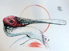 """Popatrz na mój projekt w @Behance: """"Bird - color"""" https://www.behance.net/gallery/49235741/Bird-color"""