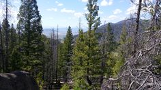 Continental Divide Trail 87