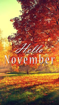 November is my favorite month.some of my favorite people were born in November. November is my favorite month.some of my favorite people were born in November.