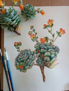 My Art — Only the background left to paint. Echeveria...