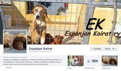 Kesäverkossa: Kodittomille espanjalaisille koirille koti Suomesta Facebookin avulla.   Facebook toimi apuna kolmen kodittoman koiran lennättämisessä Aurinkorannikolta Suomeen. Lue blogista, miten kaikki kävi. Espanjan Koirat ry:n sosiaalisen median viestinnästä voit poimia vinkkejä myös oman organisaatiosi toimintaan verkossa.