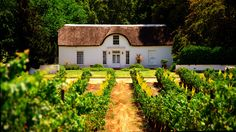 A Cape Dutch style cottage on a wine farm in Stellenbosch, South Africa South African Homes, South African Wine, Cape Dutch, Dutch House, Namibia, Dutch Colonial, Colonial Architecture, Adventure Is Out There, Land Scape