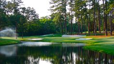 my favorite hole at Augusta National.puts you right in the middle of greens, tees, fairways, and a social gathering spot at a main scoreboard! A beautiful hole! Augusta Golf, Augusta National Golf Club, Famous Golf Courses, Public Golf Courses, Coeur D Alene Resort, Golf Pride Grips, Golf Course Reviews, Masters Golf, Golf Gifts