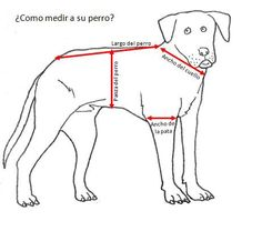 Animales Mascotas Perros Ropa Para Capas . ¿Y porqué no ? jajaj