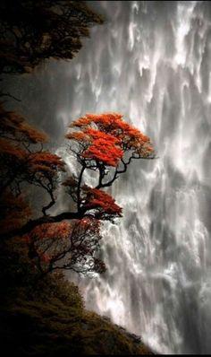 Devils Falls in New Zealand