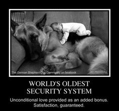 The world's oldest security system...