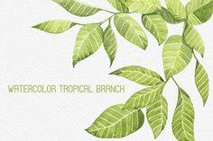 Tropical branches seamless pattern by Spasibenko Art on Creative Market