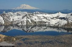 Harry's Ridge, Mount St. Helens National Volcanic Monument. 8 miles round trip; 200 feet gain. Best time: May through October