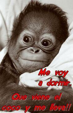 Photo http://enviarpostales.net/imagenes/photo-447/ Imágenes de buenas noches para tu pareja buenas noches amor
