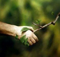 De la mano con la naturaleza
