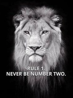 67 Top Quotes Inspirational for Success That will Inspire You Extremely 18 Short Inspirational Quotes, Great Quotes, Motivational Quotes, Fast Quotes, Leo Quotes, Wisdom Quotes, Qoutes, Tiger Quotes, Betrayal Quotes