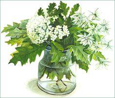 2.白い花