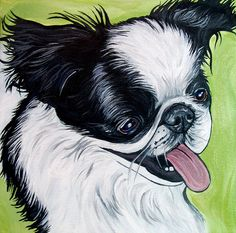 "Tank, a Japanese Chin. 8x8"" acrylic on canvas. RIP little guy. Painting by Steph Fitzsimmons, WOOFFactory.com."