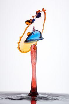 Liquid Art – XXL-TaTs   Liquid Art Wassertropfen Fotografie – Nimmervoll   Workshops