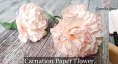 Crepe Paper from Carte Fini. Your source for premium, heavy-weight rolls imported from Italy. Our Italian crepe paper is perfectly suited for creating realistic paper flowers, decorations, photo backdrops, DIY projects and more! Paper Peonies, Crepe Paper Flowers, Fabric Flowers, Paper Roses, Flower Crafts, Diy Flowers, Flower Diy, Flower Video, Giant Flowers