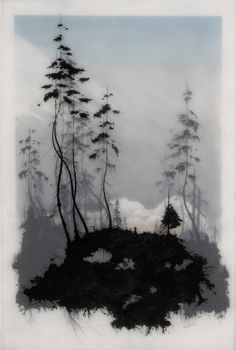 All of Brooks Salzwedel's drawings are hand drawn graphite on Duralar cast in layers of resin. Color in the pieces are made by layers of transparent tape. Her style is very unique and beautiful.
