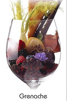 Visual representation of Grenache Just Wine, Wine And Beer, Wine Flavors, Wine Varietals, Wine Vineyards, Wine Education, Wine Guide, Wine Art, Wine Parties