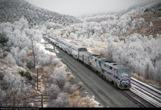 RailPictures.Net Photo: AMTK 184 Amtrak GE P42DC at Raton, New Mexico by Stephen Schmidt