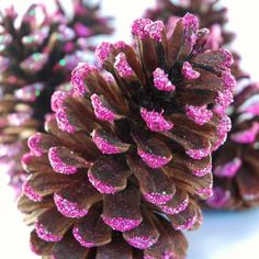 Sparkly Pink Pinecone Ornaments, great for fancying up your Christmas tree!