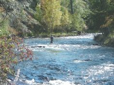 Fishing Rosebud Creek – Fishtail Montana